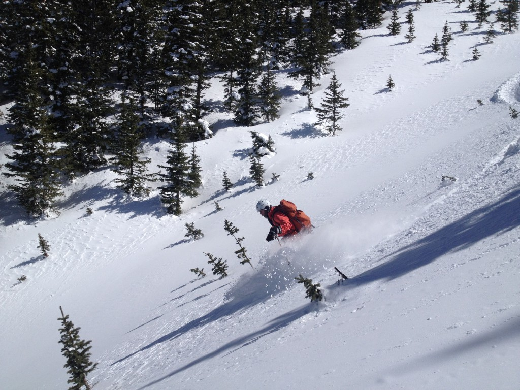 Chuck loving himself some powder in the San Juan Mountains near Red Mountain Pass and Silverton, CO
